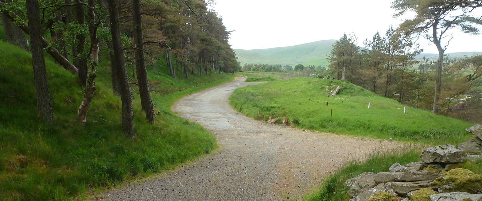 Forestry_Slide2