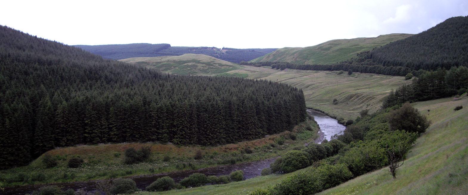 Forestry_Slide3
